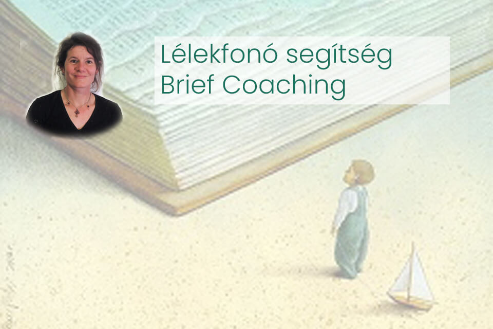 Brief Coaching